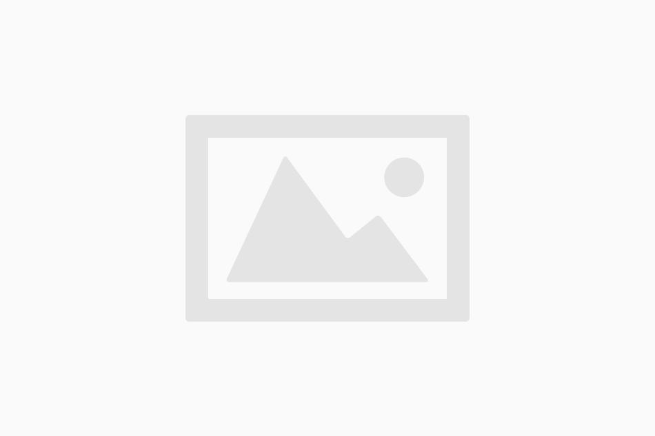 プルプル震えながらMacBook Pro の iPhoto で写真をながめるアルパカ